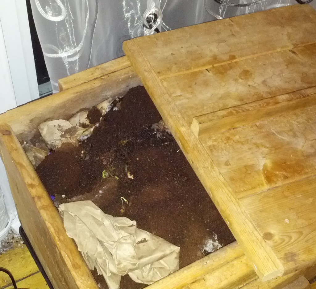 vermicompost_pic